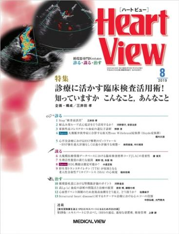 Heart View Vol.23 No.8